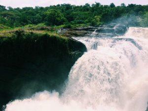 Murchison falls Bowi tours